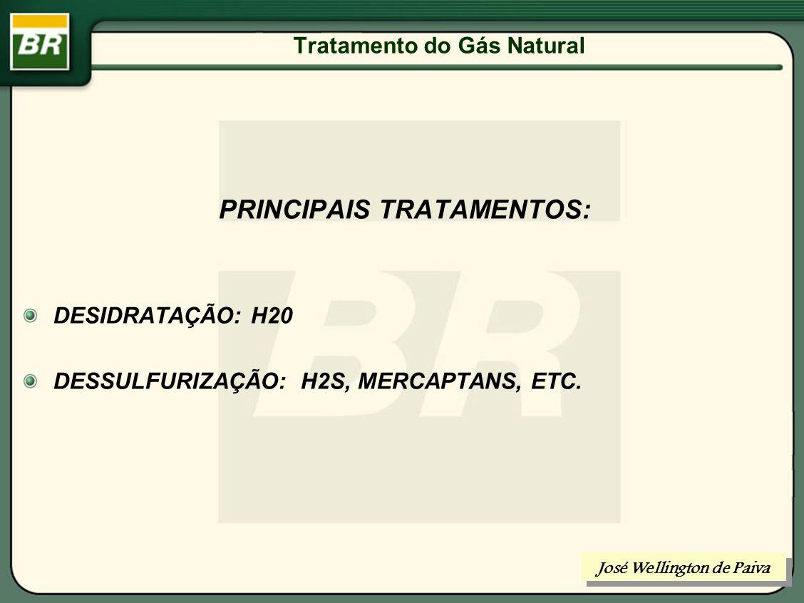 Tratamento do Gás Natural TRATAMENTO DO GÁS NATURAL José Wellington de Paiva