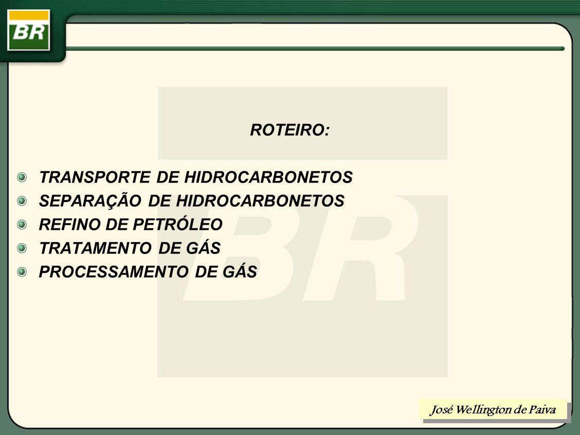 Ampliação Pólo GMR UPGN 1500 Mm³/d - Escopo do Projeto Tratamento 4500 Mm 3 /d Tratamento 2000 Mm 3 /d Comp alternativos elétricos 14 x 190 Mm 3 /d Comp Cent turbinas a gás 4 x 800 Mm³/d ECUB Fase VI Comp centrifugos elétricos 3 x 700 Mm³/d UPGN-I 2000 Mm 3 /d UPGN-II 2000 Mm 3 /d UPGN-III 1500 Mm 3 /d OUTUBRO/2005 Produções Nominais UPGN-III 260 t/d GLP 125 m³/d C5 + GásGás Disponível Mercado 5000 Mm 3 /d Existente Escopo do Projeto (*) (*) Alternativa Cap Nom =1,5 MM m3/d Gás lift Ubarana Produções Nominais UPGNS 510 t/d GLP 310 m³/d C5 +