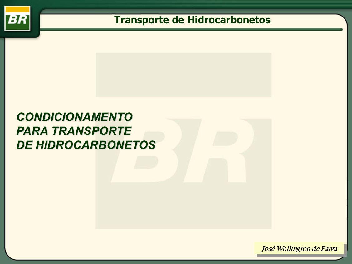 ROTEIRO: TRANSPORTE DE HIDROCARBONETOS SEPARAÇÃO DE HIDROCARBONETOS REFINO DE PETRÓLEO TRATAMENTO DE GÁS PROCESSAMENTO DE GÁS José Wellington de Paiva