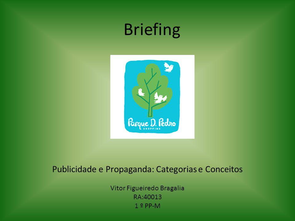 Briefing Publicidade e Propaganda: Categorias e Conceitos Vitor Figueiredo Bragalia RA:40013 1 º PP-M
