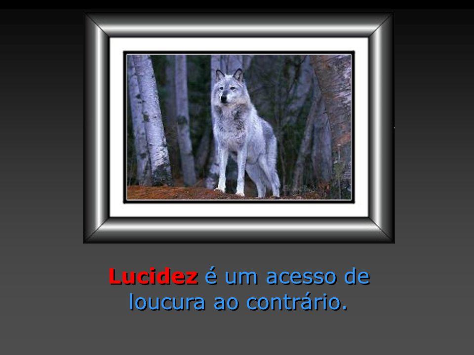 Lucidez é um acesso de loucura ao contrário. Lucidez é um acesso de loucura ao contrário.