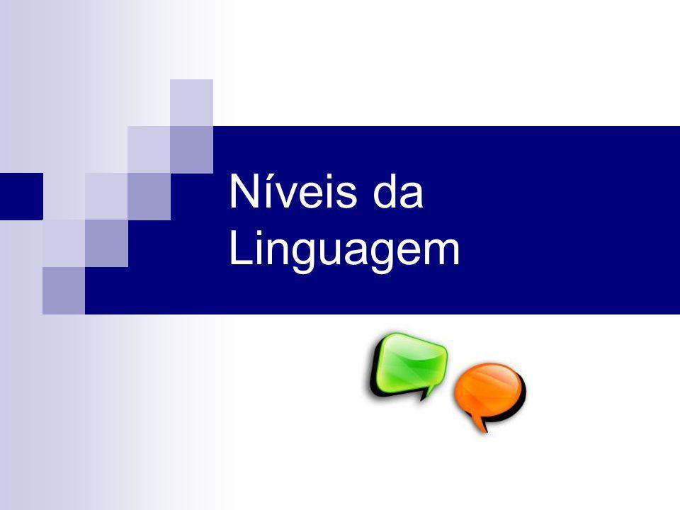 Níveis da fala A língua e os níveis da linguagem pertence a todos os membros de uma comunidade e é uma entidade viva em constante mutação.