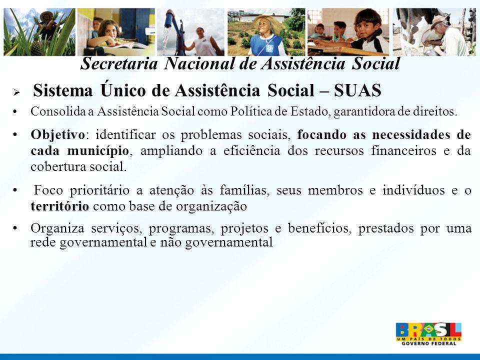 Secretaria Nacional de Assistência Social Sistema Único de Assistência Social – SUAS Consolida a Assistência Social como Política de Estado, garantido