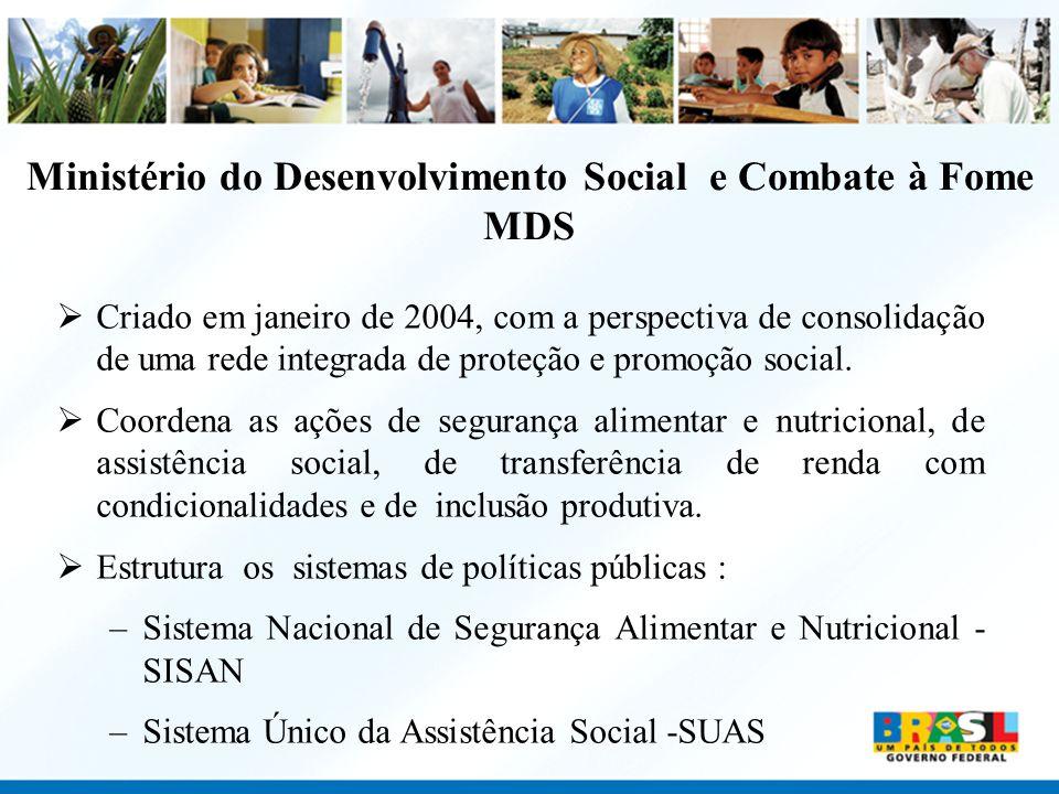 Ministério do Desenvolvimento Social e Combate à Fome MDS Criado em janeiro de 2004, com a perspectiva de consolidação de uma rede integrada de proteç