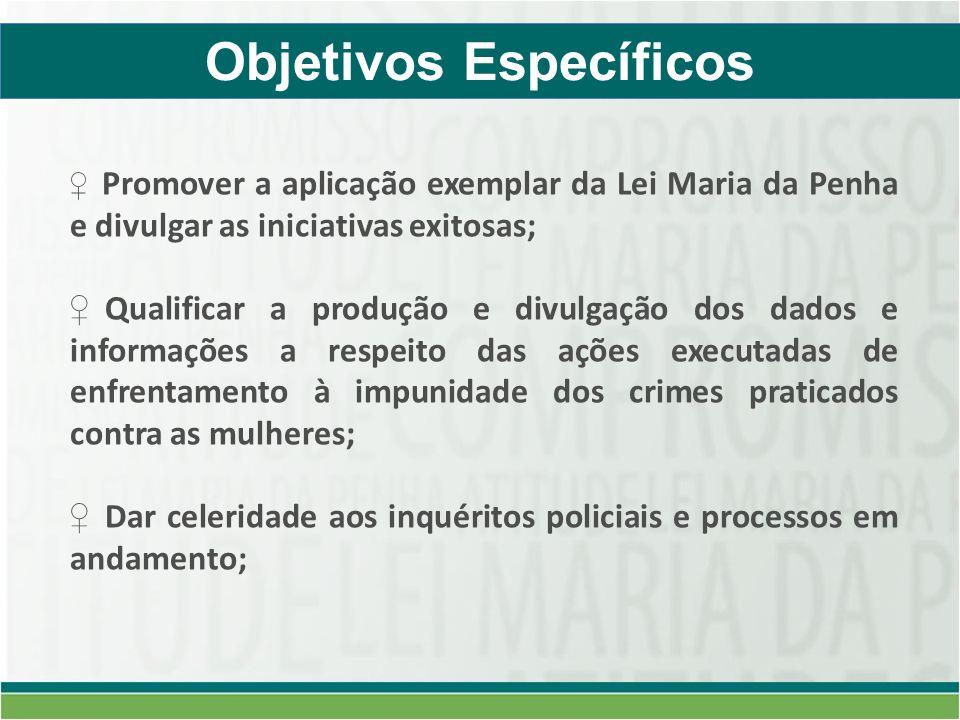 Promover a aplicação exemplar da Lei Maria da Penha e divulgar as iniciativas exitosas; Qualificar a produção e divulgação dos dados e informações a r