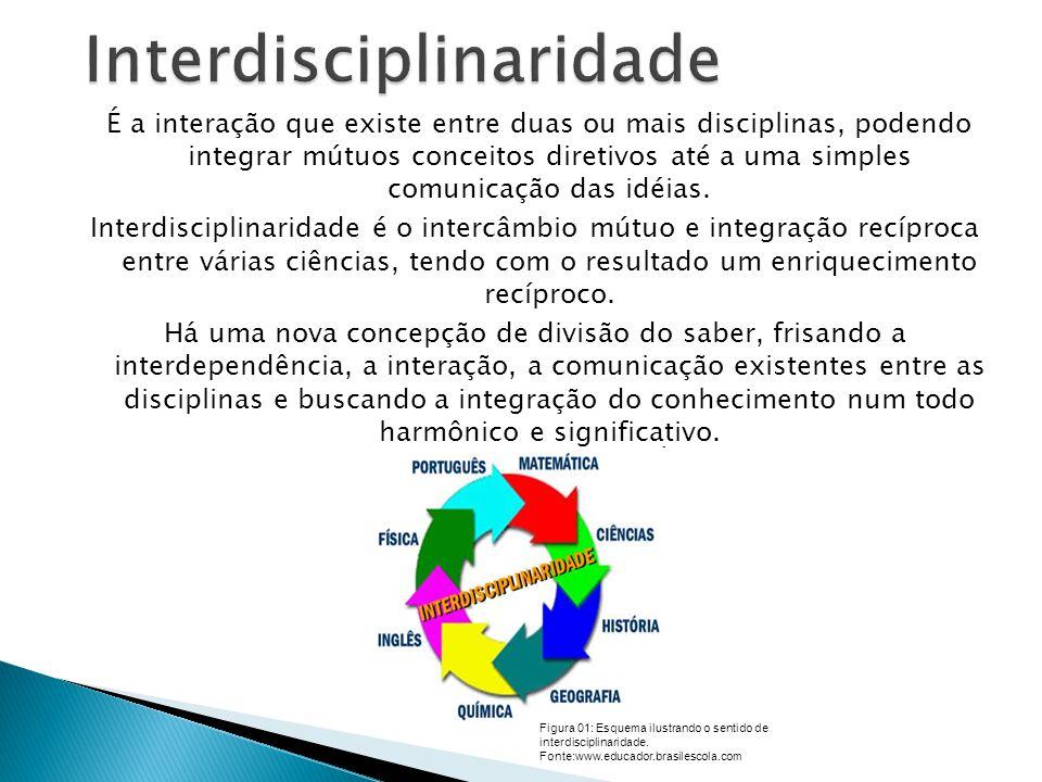 É a interação que existe entre duas ou mais disciplinas, podendo integrar mútuos conceitos diretivos até a uma simples comunicação das idéias.