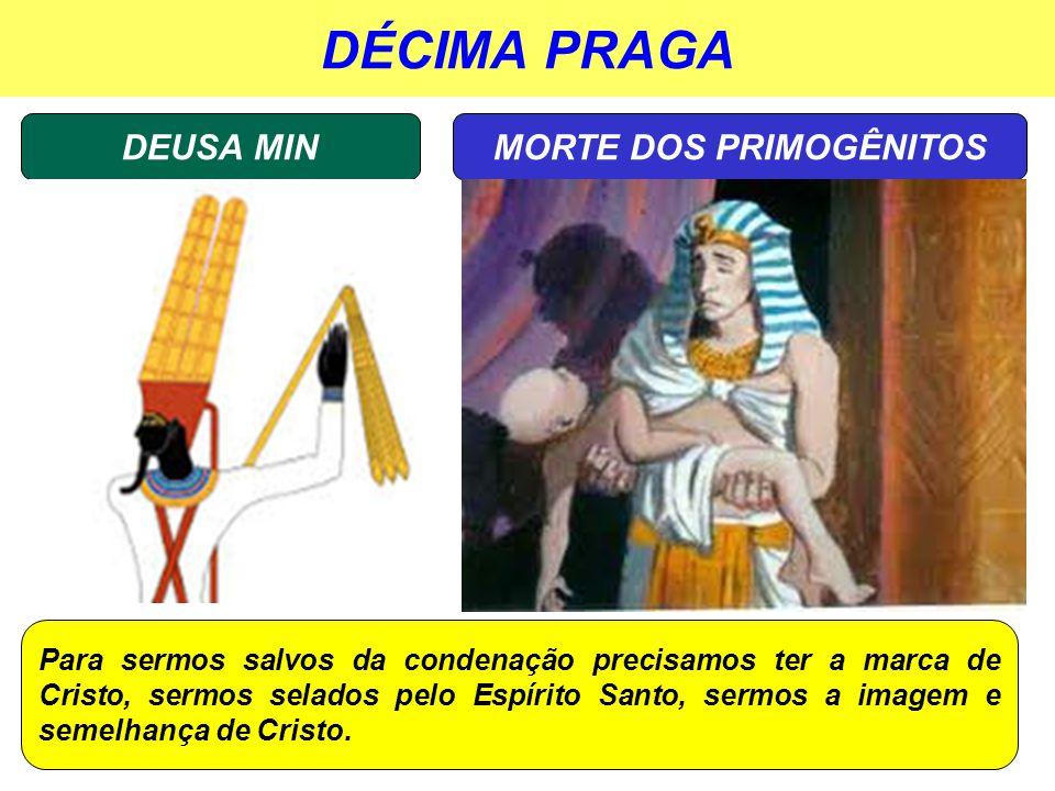 DÉCIMA PRAGA DEUSA MINMORTE DOS PRIMOGÊNITOS Para sermos salvos da condenação precisamos ter a marca de Cristo, sermos selados pelo Espírito Santo, se