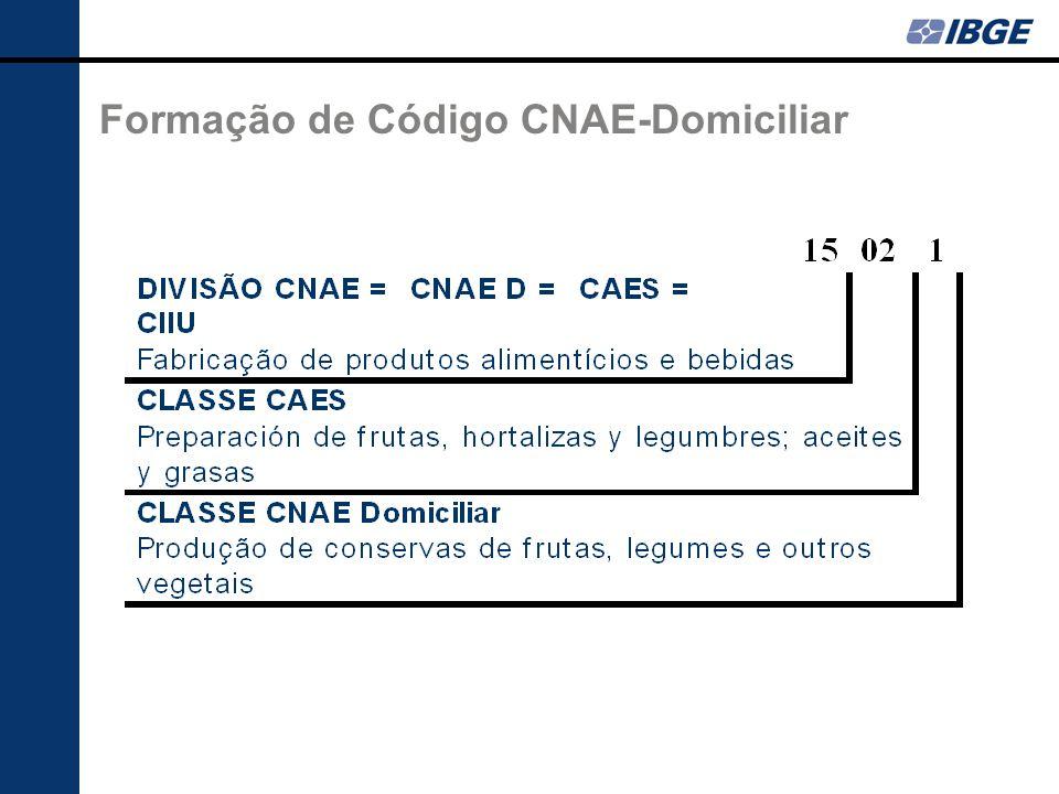 Formação de Código CNAE-Domiciliar