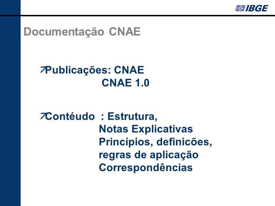 Documentação CNAE Publicações: CNAE CNAE 1.0 Contéudo : Estrutura, Notas Explicativas Princípios, definicões, regras de aplicação Correspondências