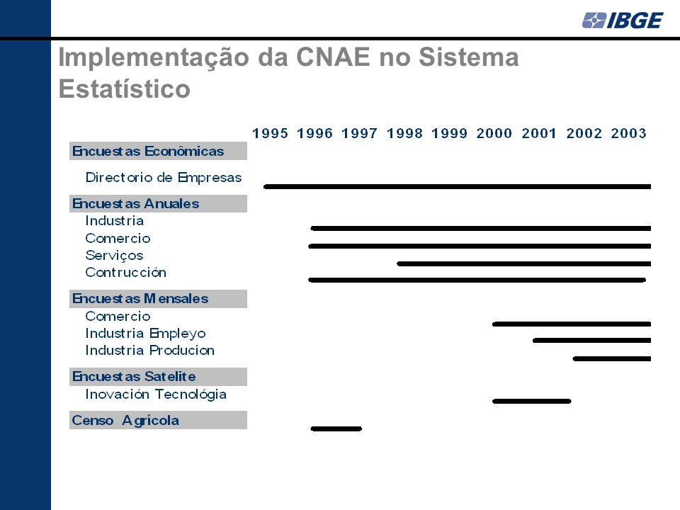 Implementação da CNAE no Sistema Estatístico