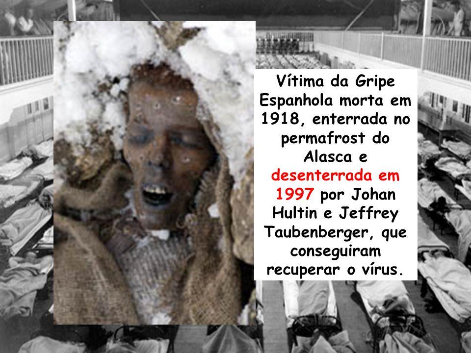 Vítima da Gripe Espanhola morta em 1918, enterrada no permafrost do Alasca e desenterrada em 1997 por Johan Hultin e Jeffrey Taubenberger, que consegu