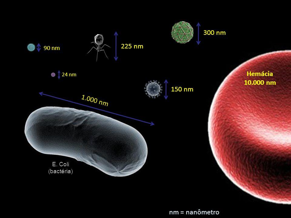 225 nm 300 nm 1.000 nm 90 nm 150 nm Hemácia 10.000 nm E. Coli (bactéria) 24 nm nm = nanômetro