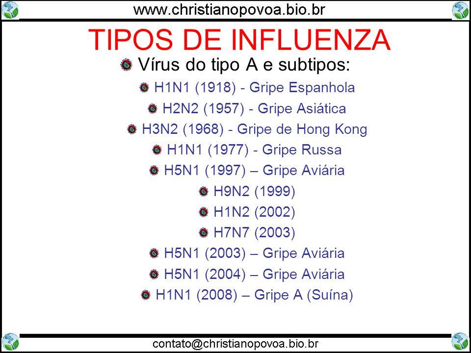 TIPOS DE INFLUENZA Vírus do tipo A e subtipos: H1N1 (1918) - Gripe Espanhola H2N2 (1957) - Gripe Asiática H3N2 (1968) - Gripe de Hong Kong H1N1 (1977)