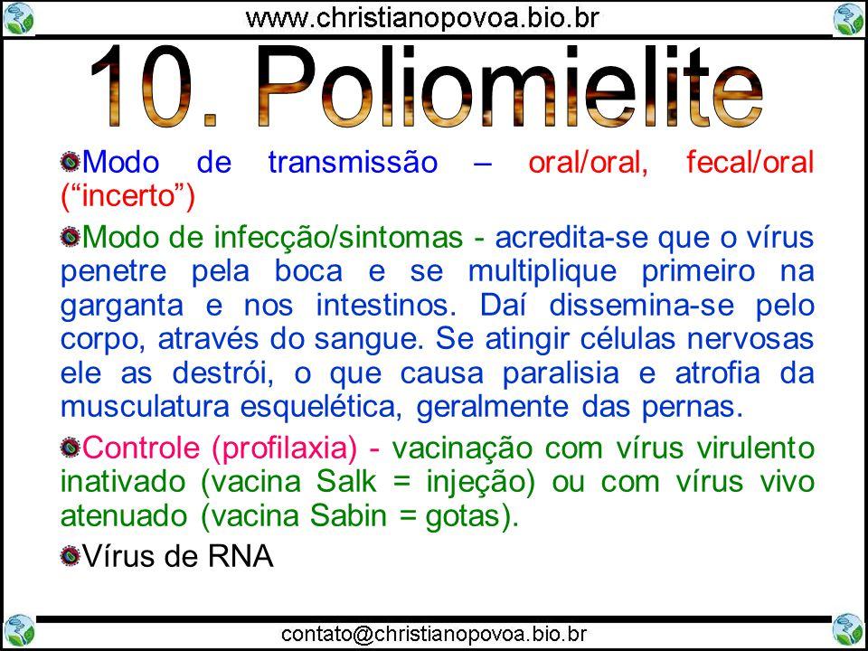 Modo de transmissão – oral/oral, fecal/oral (incerto) Modo de infecção/sintomas - acredita-se que o vírus penetre pela boca e se multiplique primeiro