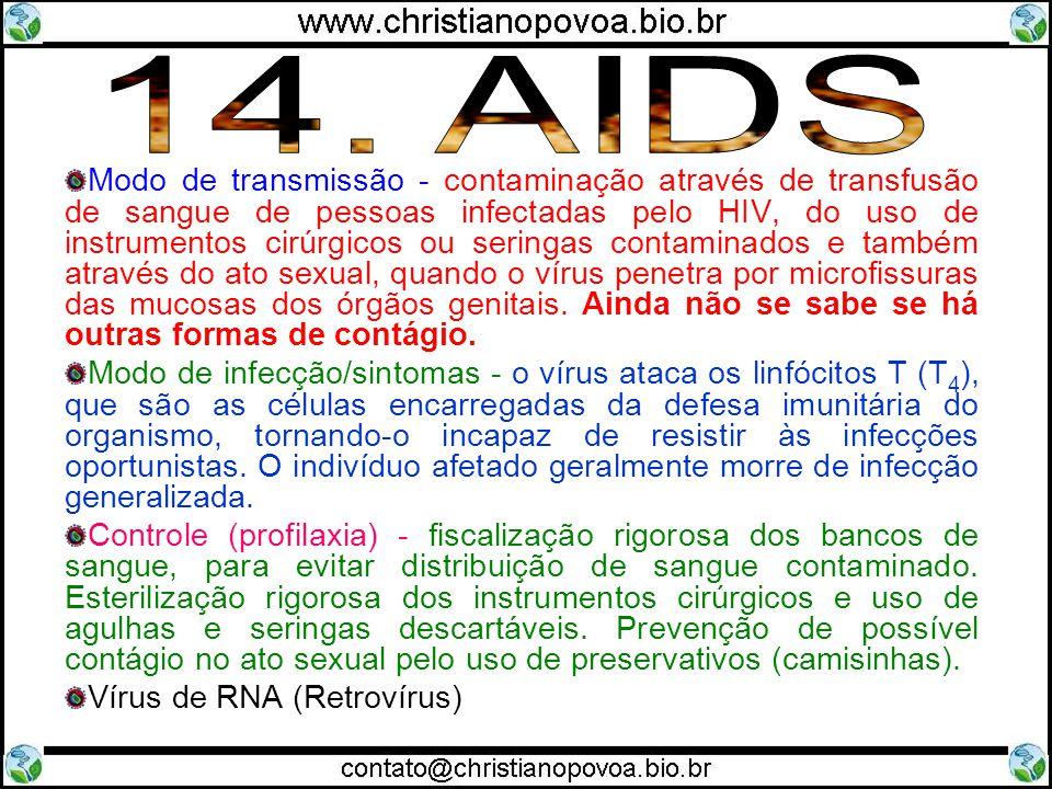 Modo de transmissão - contaminação através de transfusão de sangue de pessoas infectadas pelo HIV, do uso de instrumentos cirúrgicos ou seringas conta