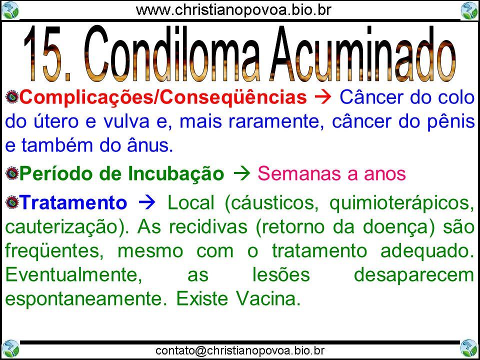 Complicações/Conseqüências Câncer do colo do útero e vulva e, mais raramente, câncer do pênis e também do ânus. Período de Incubação Semanas a anos Tr