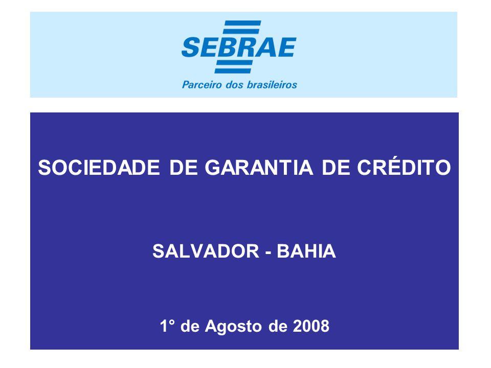 . SOCIEDADE DE GARANTIA DE CRÉDITO SALVADOR - BAHIA 1° de Agosto de 2008