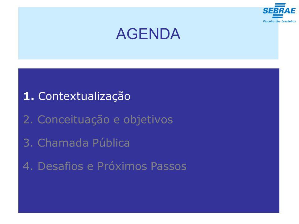 AGENDA 1. Contextualização 2. Conceituação e objetivos 3.