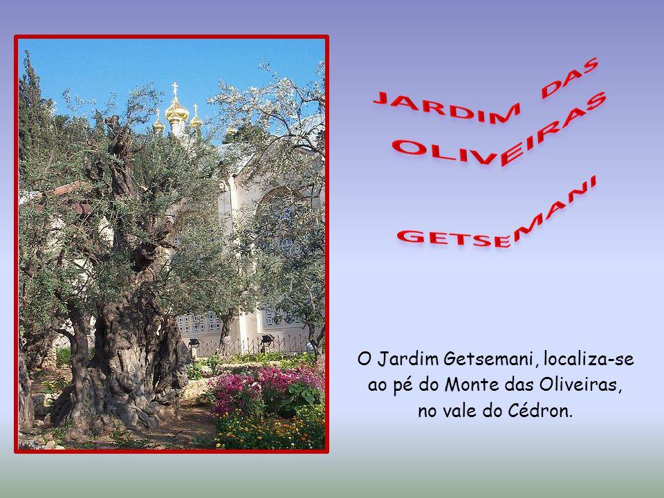 LIGUE O SOM O Jardim Getsemani, localiza-se ao pé do Monte das Oliveiras, no vale do Cédron.
