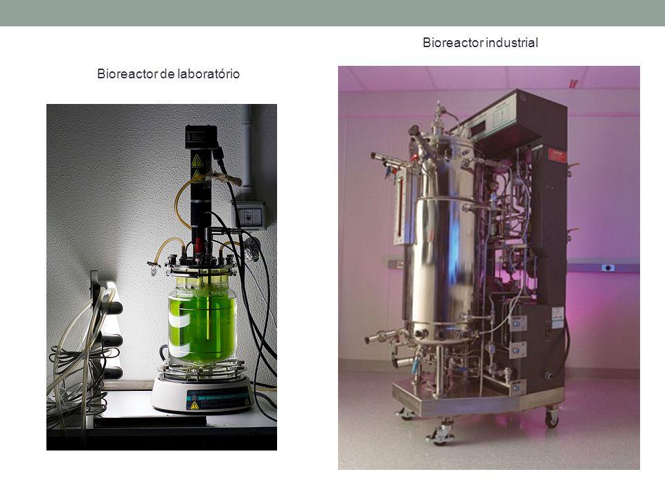 Bioreactor industrial Bioreactor de laboratório