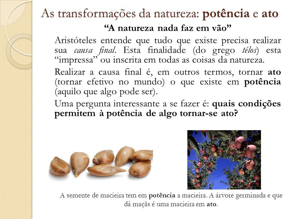 As transformações da natureza: potência e ato A natureza nada faz em vão Aristóteles entende que tudo que existe precisa realizar sua causa final. Est