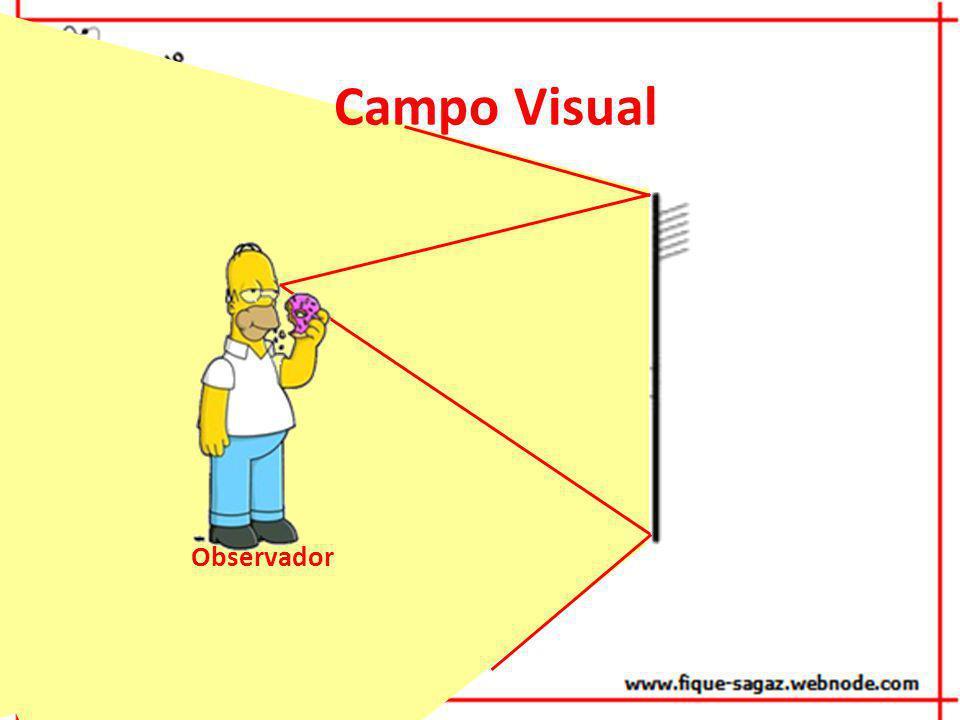Campo Visual Observador