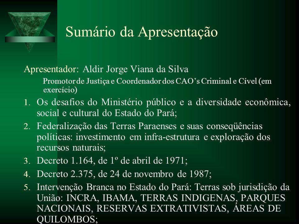 Sumário da Apresentação Apresentador: Aldir Jorge Viana da Silva Promotor de Justiça e Coordenador dos CAOs Criminal e Cível (em exercício) 1. Os desa