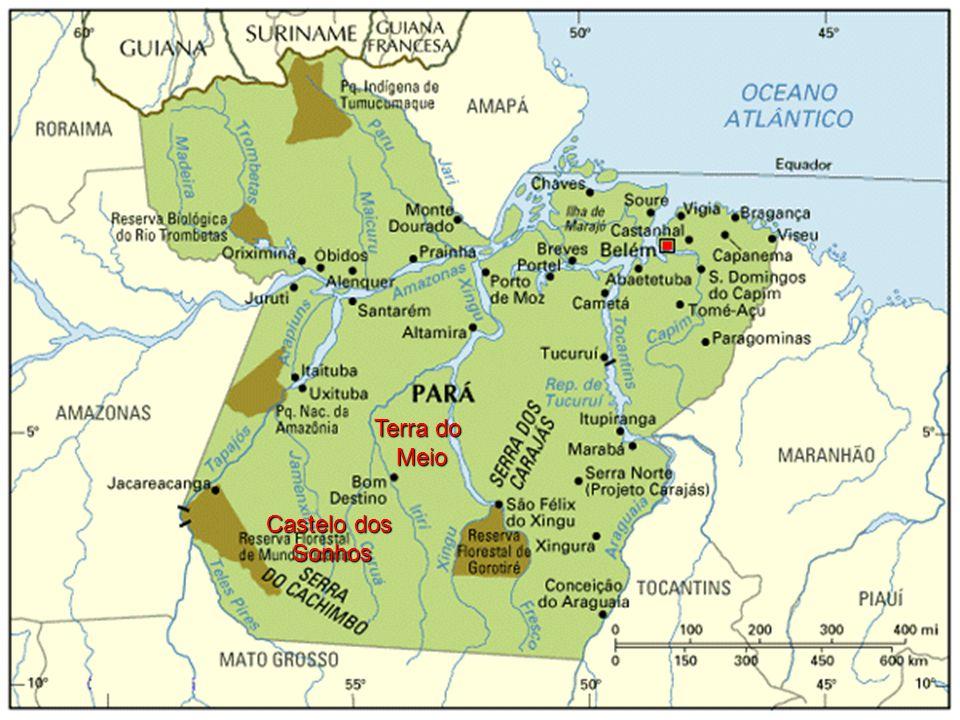 Sugestão de Diretrizes Garantir a defesa: –dos recursos naturais; –do direito de propriedade da terra rural do Estado do Pará; –melhoria qualidade de vida no meio ambiente urbano e rural.