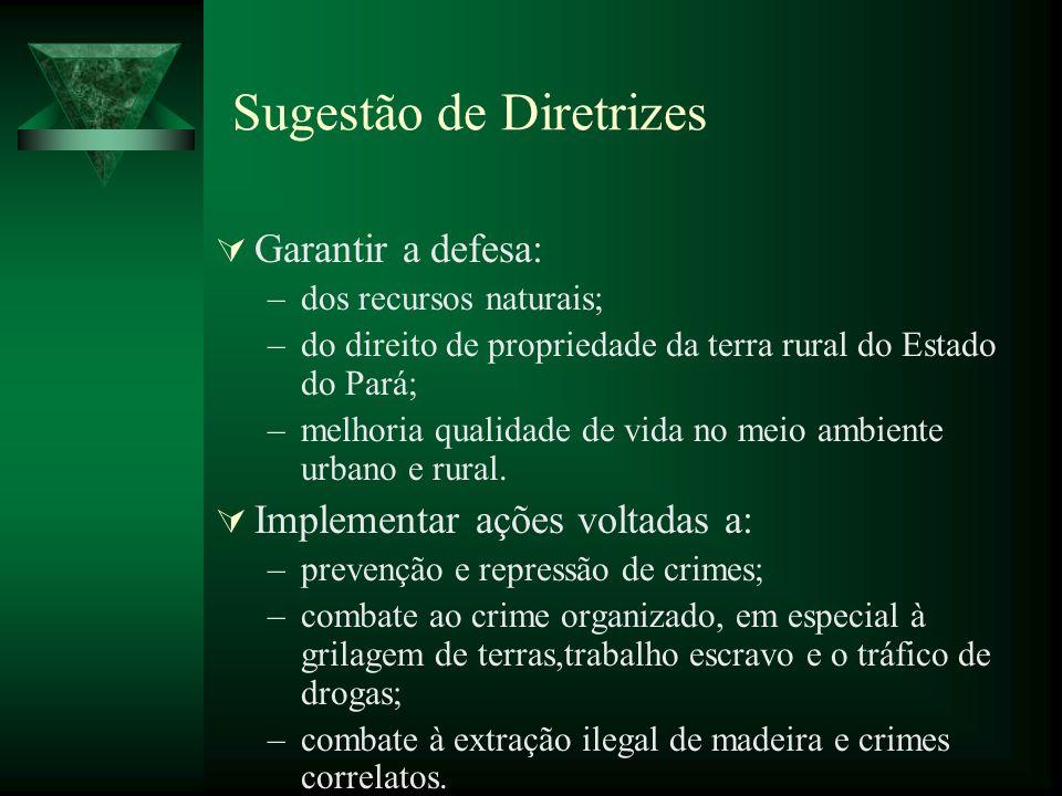 Sugestão de Diretrizes Garantir a defesa: –dos recursos naturais; –do direito de propriedade da terra rural do Estado do Pará; –melhoria qualidade de