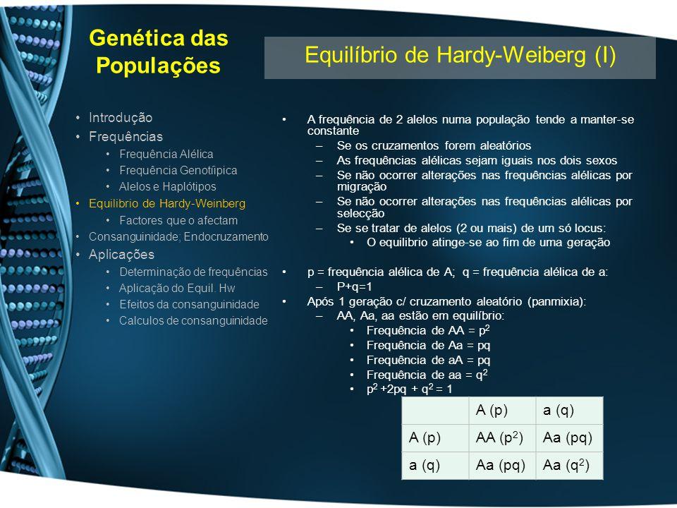 Genética das Populações Para um locus ligado ao X –Equilibrio só se atinge ao fim de várias gerações Para 2 loci : –Equilibrio atinge-se com número elevado de gerações Depende da frequência de recombinação A frequência de heterozigotos é maior para 3 alelos Frequência de Aa >> aa (2pq>>q 2 ) Quanto maior o número de alelos –Mais próximas as suas frequências –Maior a frequência de heterozigotos –Maior a variabilidade génica Para o cromossoma X –Nas mulheres comportam-se como os autossomas –No Homem frequência genotípica=frequência alélica no Homem Introdução Frequências Frequência Alélica Frequência Genotíipica Alelos e Haplótipos Equilibrio de Hardy-Weinberg Factores que o afectam Consanguinidade; Endocruzamento Aplicações Determinação de frequências Aplicação do Equil.
