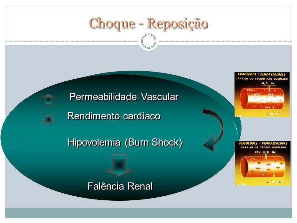 Choque - Reposição Falência Renal Hipovolemia (Burn Shock) Permeabilidade Vascular Rendimento cardíaco Permeabilidade Vascular Rendimento cardíaco