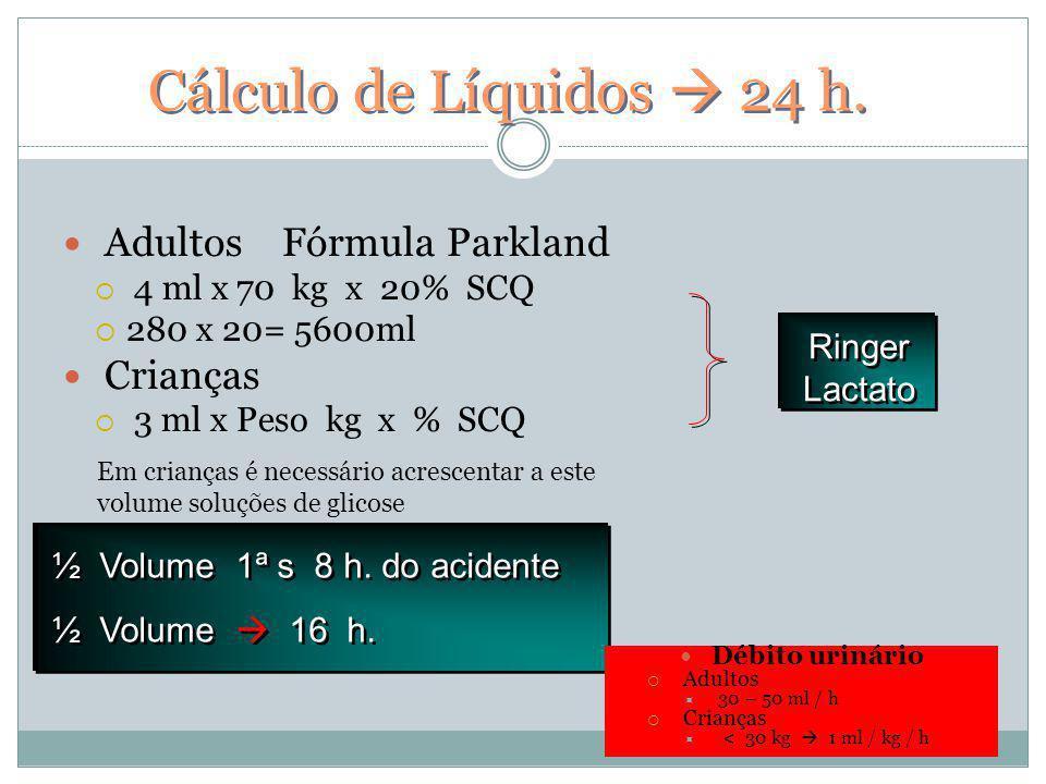 Cálculo de Líquidos 24 h. Adultos Fórmula Parkland 4 ml x 70 kg x 20% SCQ 280 x 20= 5600ml Crianças 3 ml x Peso kg x % SCQ ½ Volume 1ª s 8 h. do acide