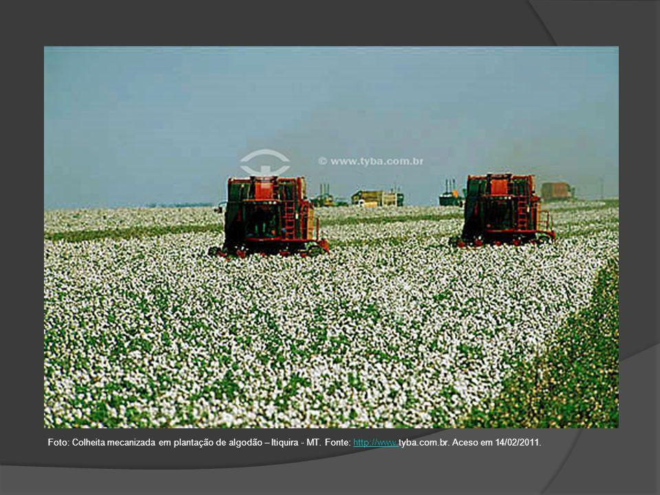 Foto: Colheita mecanizada em plantação de algodão – Itiquira - MT. Fonte: http://www.tyba.com.br. Aceso em 14/02/2011.http://www.