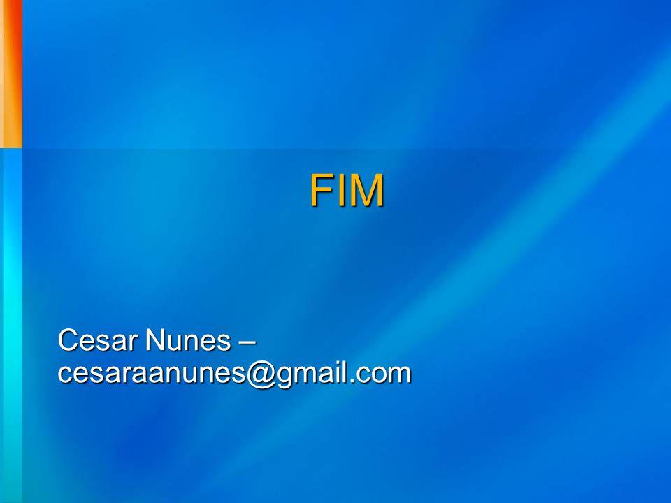 FIM Cesar Nunes – cesaraanunes@gmail.com