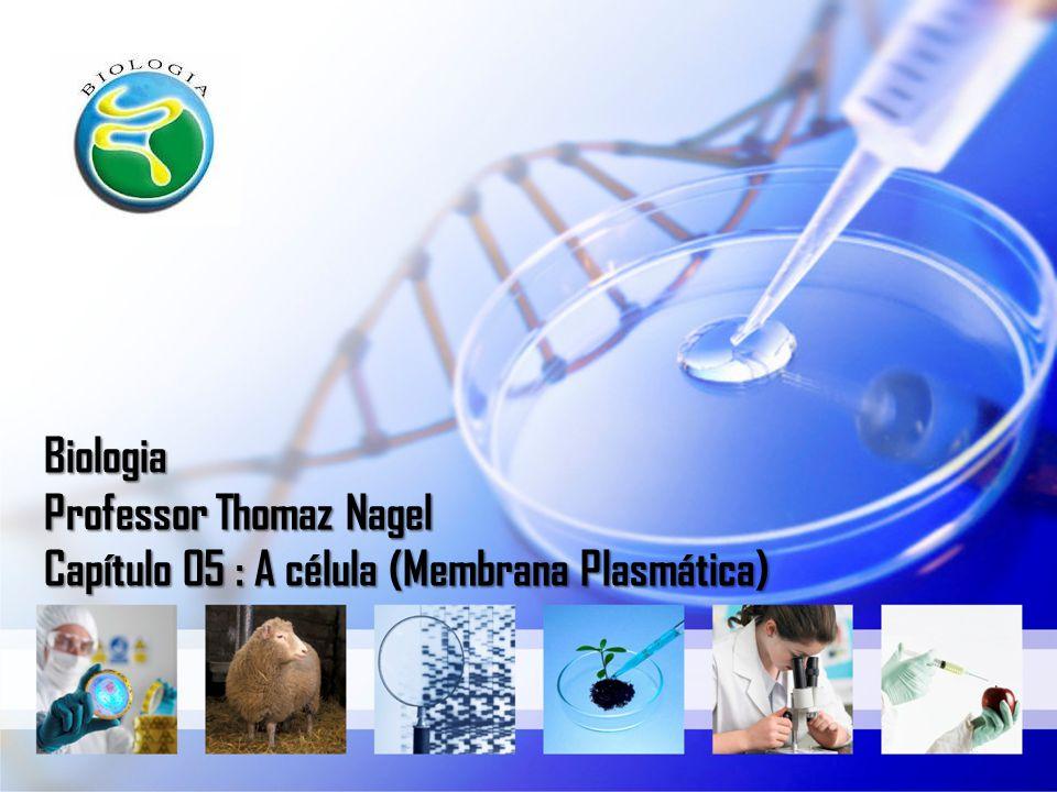 Membrana plasmática membrana celular ou plasmalema Estrutura que delimita todas as células vivas, tanto as procarióticas como as eucarióticas.