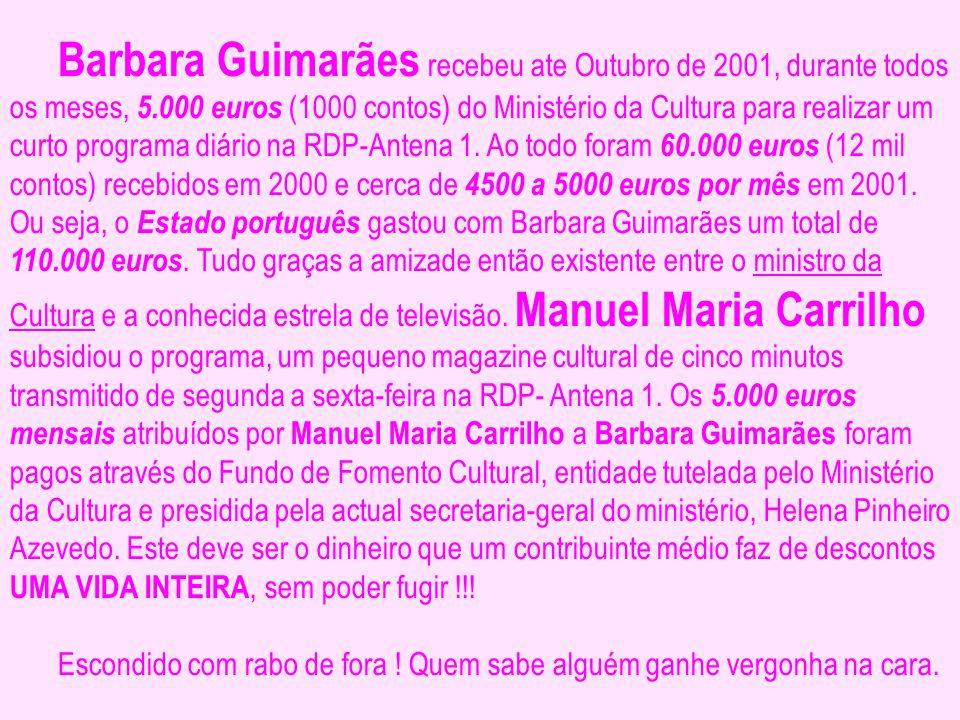 Barbara Guimarães recebeu ate Outubro de 2001, durante todos os meses, 5.000 euros (1000 contos) do Ministério da Cultura para realizar um curto progr