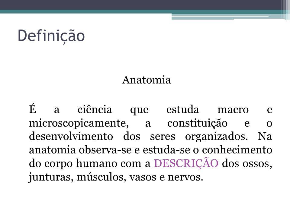 Definição Anatomia É a ciência que estuda macro e microscopicamente, a constituição e o desenvolvimento dos seres organizados.