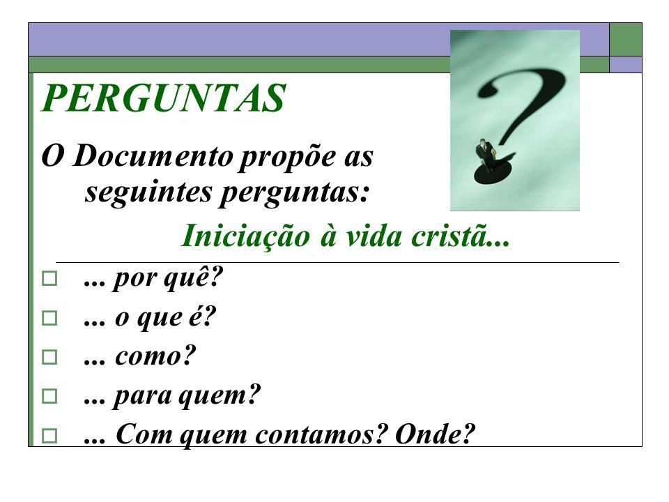 PERGUNTAS O Documento propõe as seguintes perguntas: Iniciação à vida cristã...... por quê?... o que é?... como?... para quem?... Com quem contamos? O