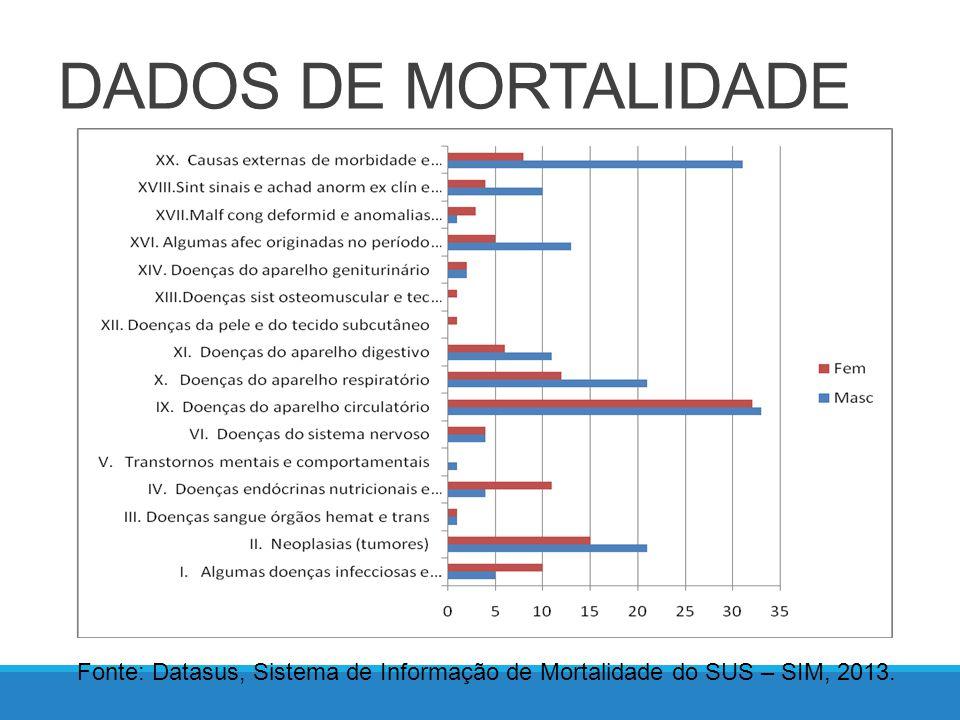 DADOS DE MORBIDADE HOSPITALAR Fonte: Datasus, Sistema de Informações Hospitalares do SUS – SIH, 2013.