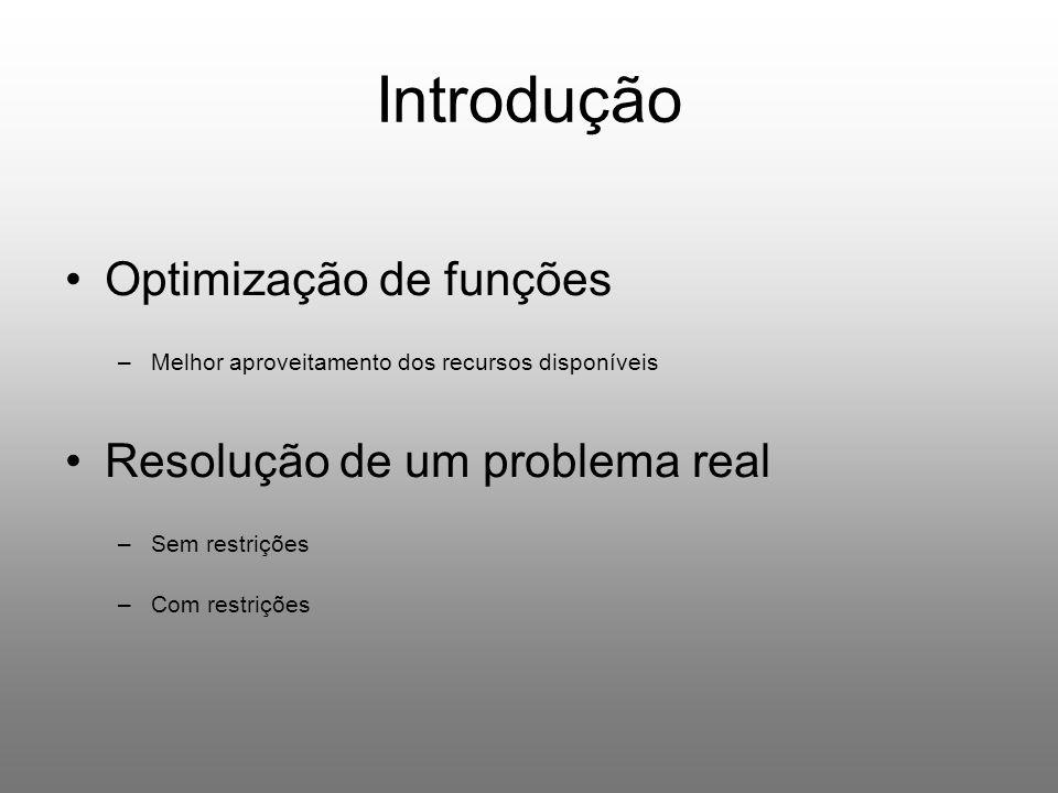 Introdução Optimização de funções –Melhor aproveitamento dos recursos disponíveis Resolução de um problema real –Sem restrições –Com restrições