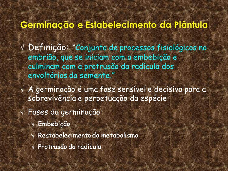 Germinação e Estabelecimento da Plântula Definição:Conjunto de processos fisiológicos no embrião, que se iniciam com a embebição e culminam com a prot