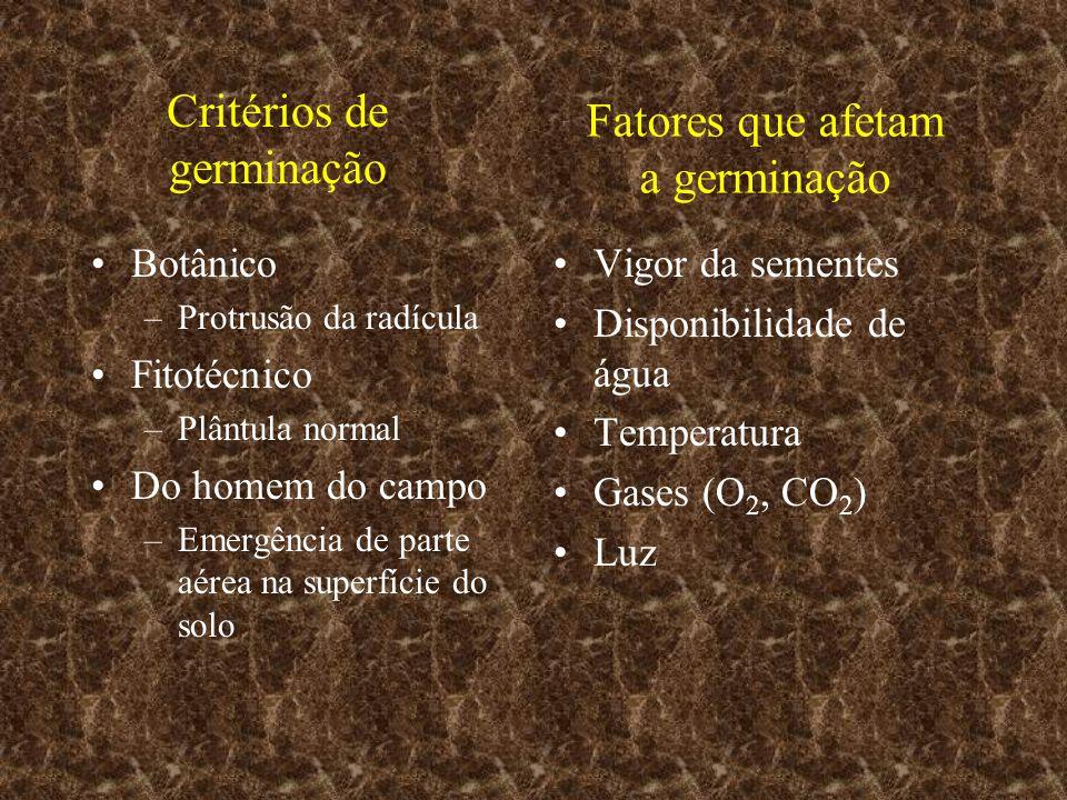 Critérios de germinação Botânico –Protrusão da radícula Fitotécnico –Plântula normal Do homem do campo –Emergência de parte aérea na superfície do sol