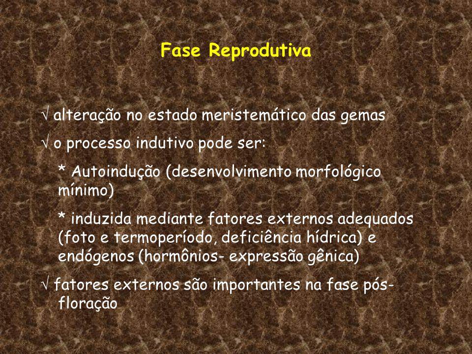 Fase Reprodutiva alteração no estado meristemático das gemas o processo indutivo pode ser: * Autoindução (desenvolvimento morfológico mínimo) * induzi
