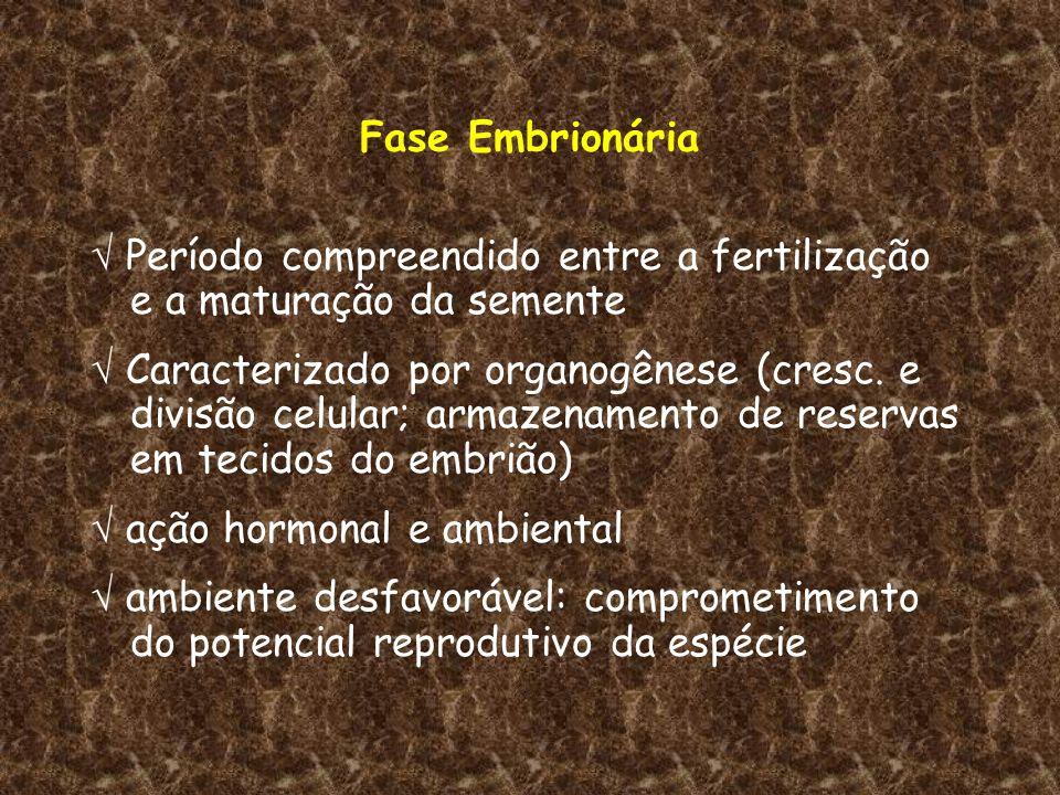 Fase Embrionária Período compreendido entre a fertilização e a maturação da semente Caracterizado por organogênese (cresc. e divisão celular; armazena