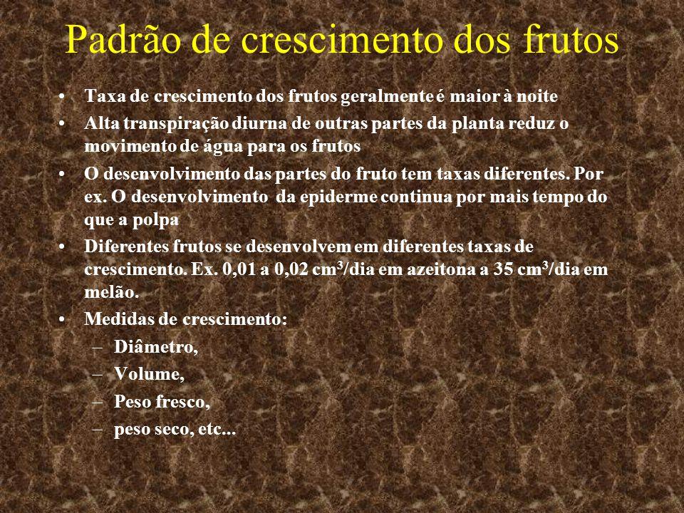 Padrão de crescimento dos frutos Taxa de crescimento dos frutos geralmente é maior à noite Alta transpiração diurna de outras partes da planta reduz o