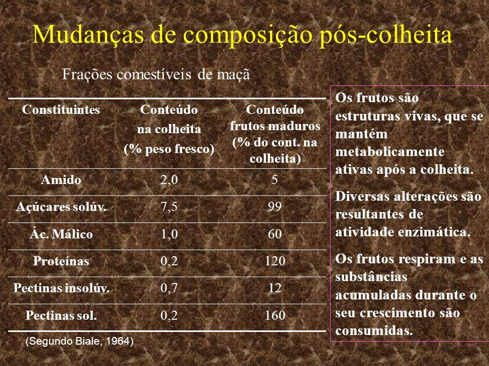 Mudanças de composição pós-colheita ConstituintesConteúdo na colheita (% peso fresco) Conteúdo frutos maduros (% do cont. na colheita) Amido2,05 Açúca