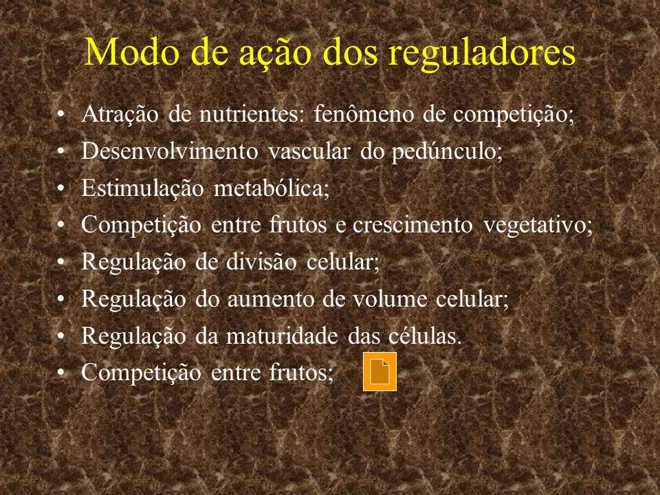 Modo de ação dos reguladores Atração de nutrientes: fenômeno de competição; Desenvolvimento vascular do pedúnculo; Estimulação metabólica; Competição