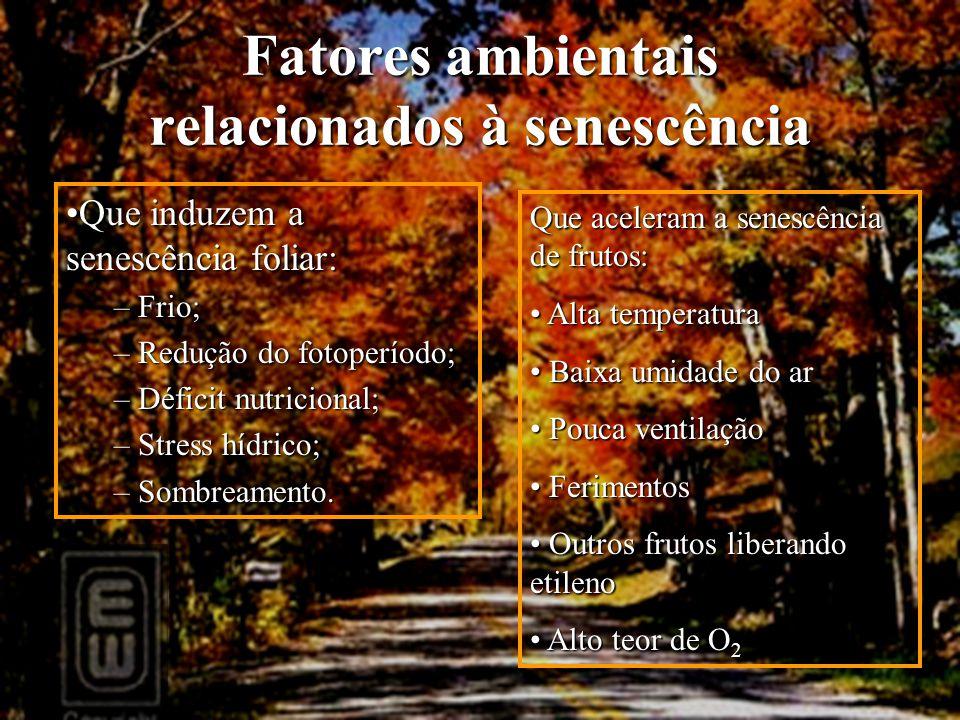 Fatores ambientais relacionados à senescência Que induzem a senescência foliar:Que induzem a senescência foliar: – Frio; – Redução do fotoperíodo; – D
