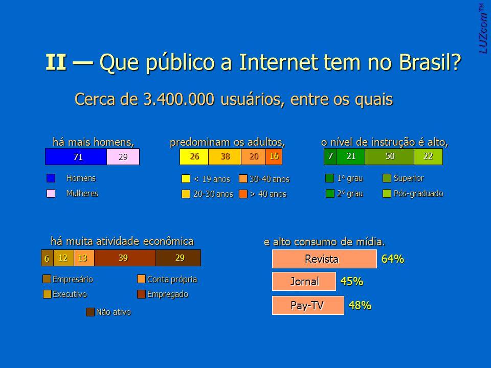 II Que público a Internet tem no Brasil.