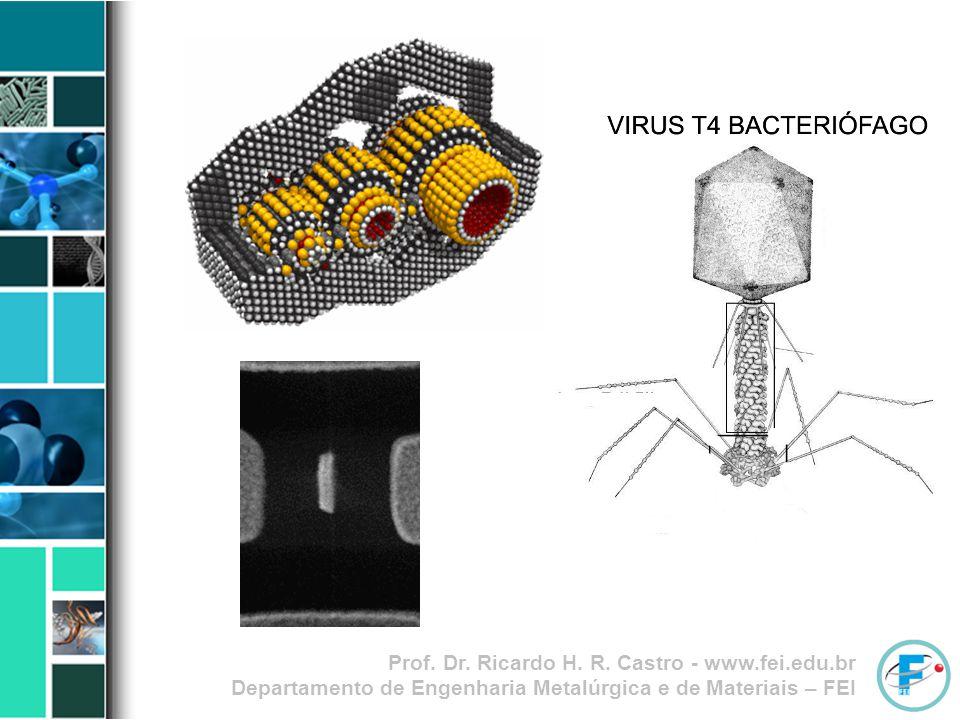 Prof. Dr. Ricardo H. R. Castro - www.fei.edu.br Departamento de Engenharia Metalúrgica e de Materiais – FEI